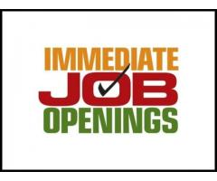 Required Accountant Accounts Executive