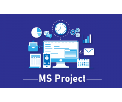 Learn MS Project Training Online
