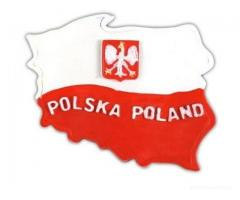 Polish speaking translator and moderator available online
