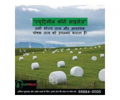 Silage Supplier in India