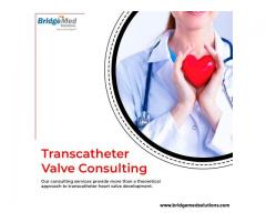Transcatheter Valve Consulting