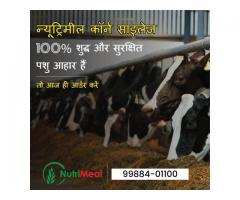 Best Silage Suppliers in India